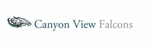 Microsoft Word – canyon view