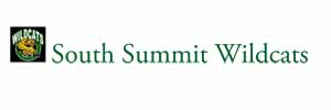 Microsoft Word – south summit